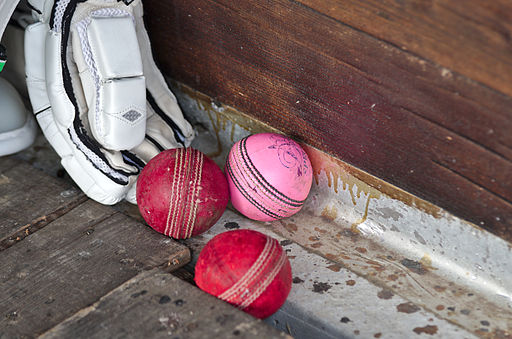 PCAPH vs CERN CC - 20140911 - Cricket balls