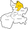 POL Miasto Strumień.png