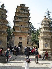 Pagoda Forest9