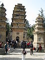 Pagoda Forest9.JPG