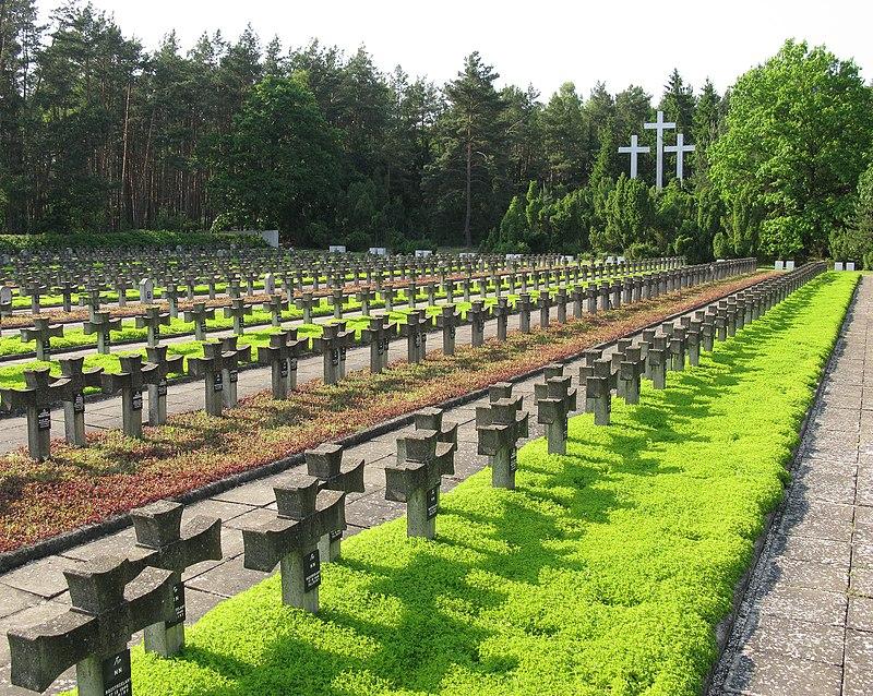 Cemetery in Palmiry