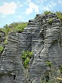 Pancake Rocks, West Coast Region, New Zealand (31).JPG