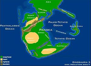 Choiyoi Group - Paleogeographic reconstruction of Pangea 237 million years ago. The Choiyoi Group was deposited immediately east of the Proto-Andes.