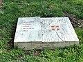 Parc floral des Thermes (Aix les-Bains) - DSC05144.jpg