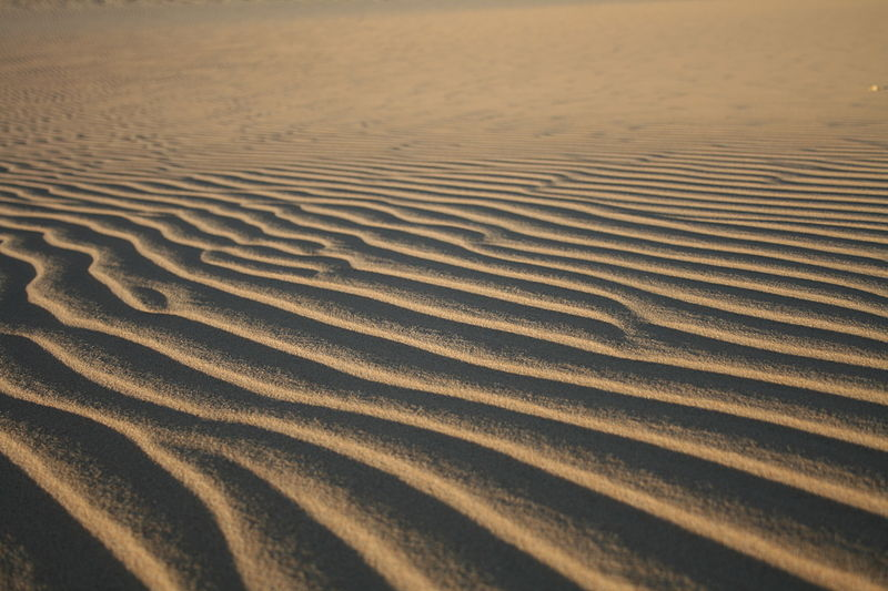 Archivo:Parc national de l'Ahaggar,Algerie 02.JPG