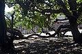 Parque Nacional dos Lençóis Maranhenses Ilse Klasing Sparovek (11).jpg