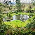 Parque Terra Nostra, Furnas, S. Miguel, Açores,Portugal - panoramio (11).jpg
