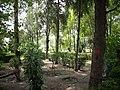 Parque Vista Hermosa - panoramio.jpg