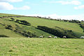 Parracombe, the Common - geograph.org.uk - 504552.jpg