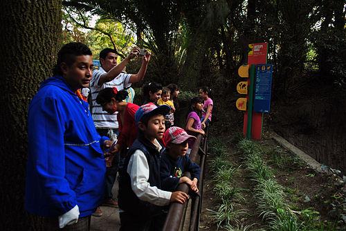 Thumbnail from Chapultepec Zoo