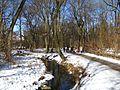 Pasinger Stadtpark Feb 2010-2.JPG