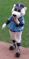 Paws - PawSox mascot.png