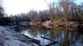 Pearl River at Rosemary.jpg