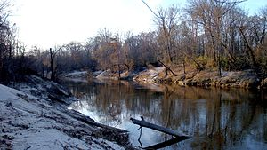 Pearl River (Mississippi–Louisiana) - The Pearl River in Hinds County, MS