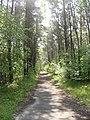 Peenemünde, Germany - panoramio - Eugeniy Meshcheryako… (20).jpg