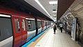 Pendik metro.jpg