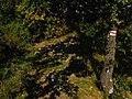 Perőcsény, Hungary - panoramio (22).jpg