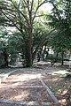 Pesaro Orti Giuli veduta interna sentieri.jpg