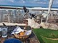 PikiWiki Israel 50341 tel aviv seashor.jpg
