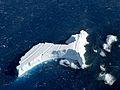 Pine Island Bay Iceberg (8157908348).jpg