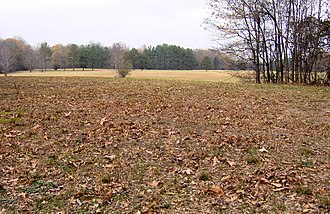 Pinson Mounds - The view across the top of Mound 10 into a field below