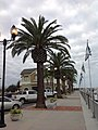 Pittsburg, CA Marina - panoramio (4).jpg