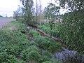 Piuhanjoki, Raisio, 27.5.2010 (2).JPG