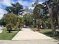 Plaza Alsina,Viedma, Río Negro, Argentina.jpg
