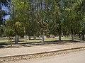 Plaza Gral Gertrudis Sanchez - panoramio.jpg