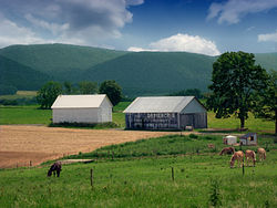 a farm in the Nittany Valley in the township
