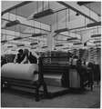 Portugal. Textile Plant - NARA - 541760.tif