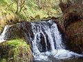 Potok Shupur m.v Alamanica s.Gjavato.JPG