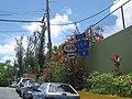 Puerto Rico Highway 159 East.jpg