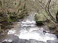 Pwll-y-wrach looking downstream - geograph.org.uk - 318167.jpg