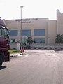 Qatar Equestrian Federation.jpg