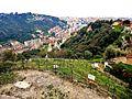 Quartier du Val du Carei, vu du jardin du monastère de l'Annonciade.jpg