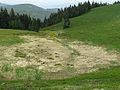 Quellgebiet des Zastlerbaches.jpg