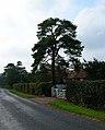 Quinces, Camberlot Road, near Upper Dicker - geograph.org.uk - 62601.jpg