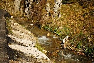Dâmbovicioara (river) river in Romania
