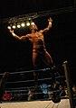 Randy Orton 05 pose.jpg