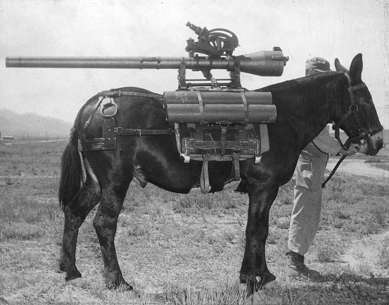 https://upload.wikimedia.org/wikipedia/commons/thumb/a/aa/Recoilless_Rifle_mounted_on_a_mule_-_NARA_-_292567.jpg/764px-Recoilless_Rifle_mounted_on_a_mule_-_NARA_-_292567.jpg