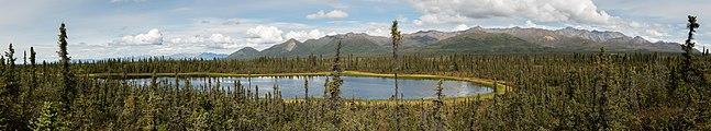 Refugio Nacional de Vida Silvestre Tetlin, Alaska, Estados Unidos, 2017-08-24, DD 14-20 PAN.jpg
