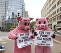 Republican National Convention, September 1-4, 2008. Protesters dressed as pigs want more taxes on meat, near the Xcel Center, St. Paul, Minnesota LCCN2010719274.tif