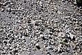 Rhyodacite pumice fall deposit (Holocene; south of Grouse Hill, Crater Lake Caldera, Oregon, USA) 2.jpg