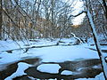 Ridley Creek Ice Snow.JPG