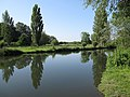 River Cam - geograph.org.uk - 1337790.jpg