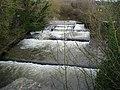 River Exe - geograph.org.uk - 643906.jpg