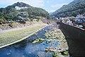 River Lyn, Lynmouth - geograph.org.uk - 419654.jpg