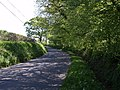 Road at Chillaton Hill Cross - geograph.org.uk - 429171.jpg