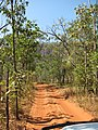 Road zu den Jim Jim Falls - panoramio.jpg